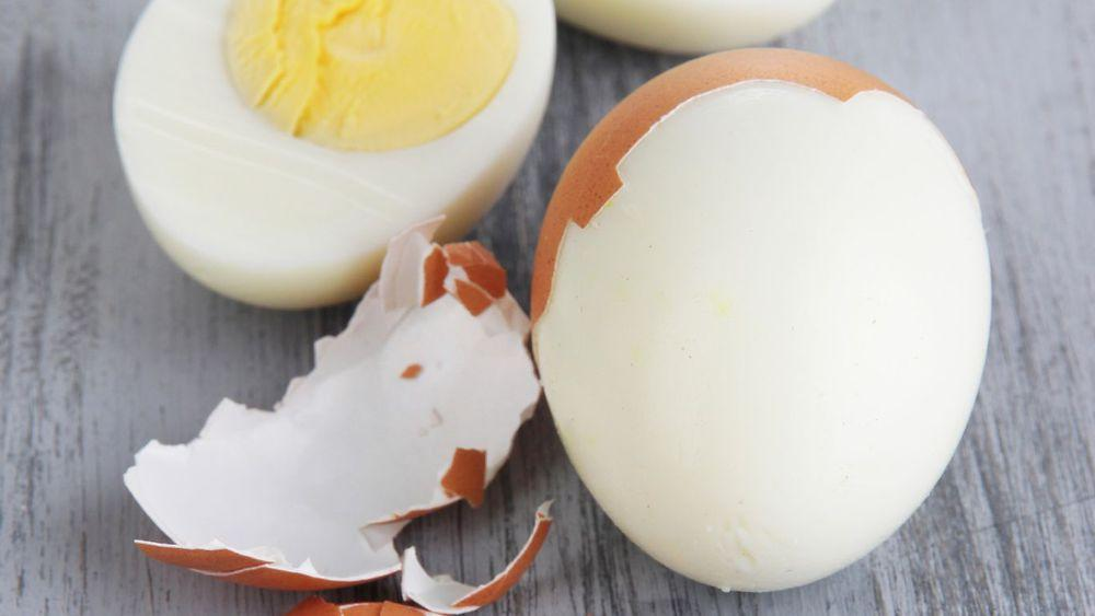Oeufs durs ecales 5509675